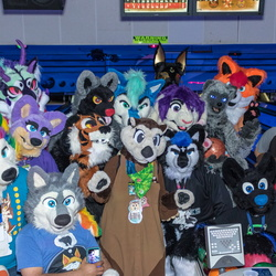 Cupertino Furbowl July 2018